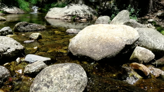 river flowing pond river clear water full of rocks and stones in background in Spain Europe rapids river stock videos & royalty-free footage
