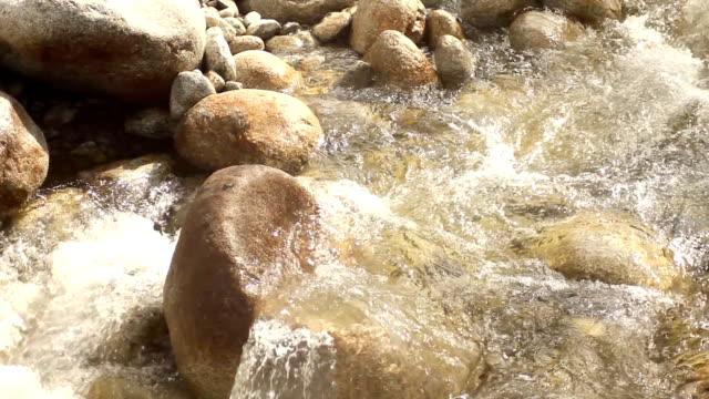 River HD) video