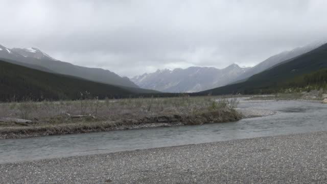 River in Jasper National Park video