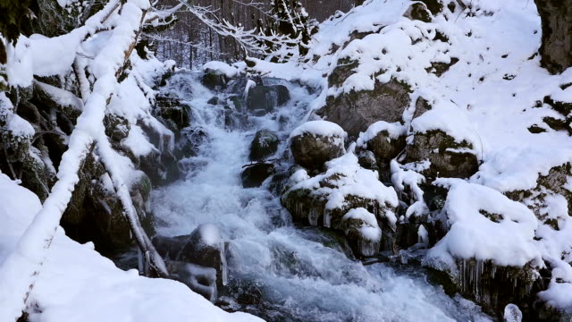 River in snowy forest video
