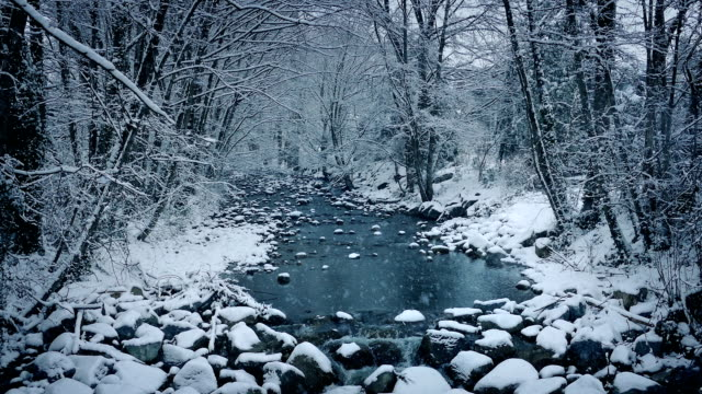 River In Snowy Woodland video