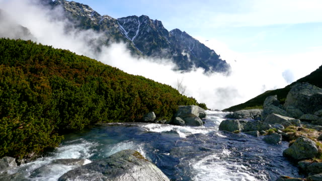 River in the Tatra mountains video