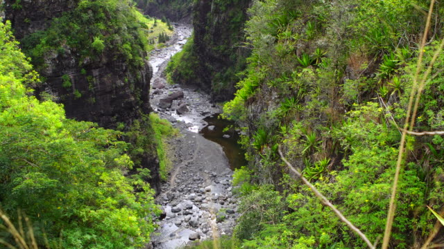 Riviere des Galets - Reunion Island video