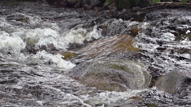 SLOW MOTION: River Rapid Slow motion of a river rapid flowing over rocks 笹 stock videos & royalty-free footage