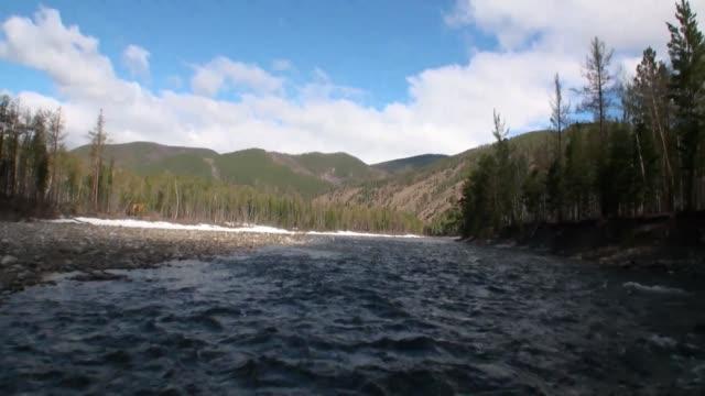 山の川の急流とロシアのシベリアの森。 - 自然旅行点の映像素材/bロール