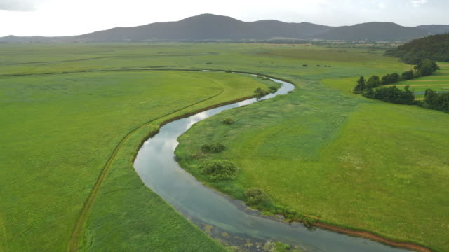 AERIAL River running across a green marsh on a cloudy day