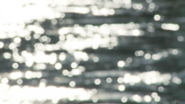HD: River Sparkling In Sunshine video