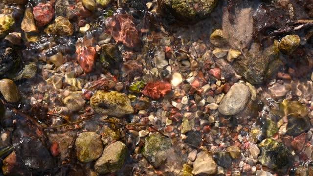 речные камни на реке под водой - камень стоковые видео и кадры b-roll