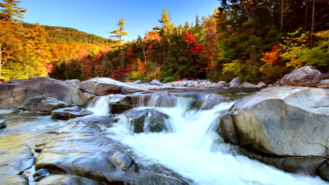 River through fall foliage, Swift River Lower Falls, NH, USA video