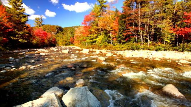 River through fall foliage, Swift River, New Hampshire, USA video