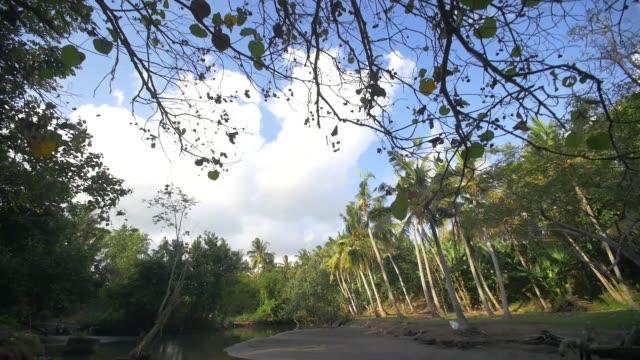 nehir - ravenna stok videoları ve detay görüntü çekimi