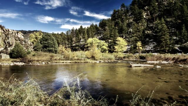 川 - 生態系点の映像素材/bロール