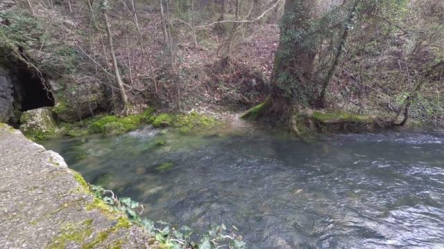 River Vipava spring video