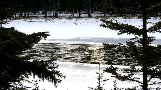 River water flowing on snowed park video