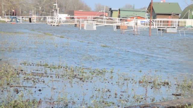 flodvatten över promenade - serbien bildbanksvideor och videomaterial från bakom kulisserna