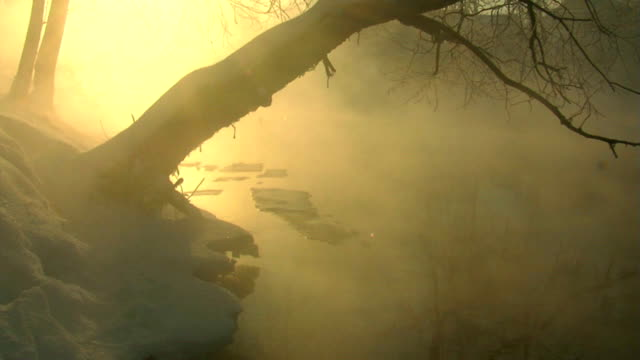 River. Winter. Morning. Fog. Icing. video