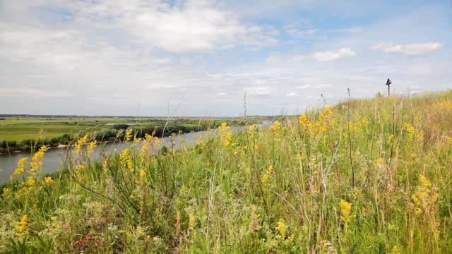 川の風景 - 土手点の映像素材/bロール