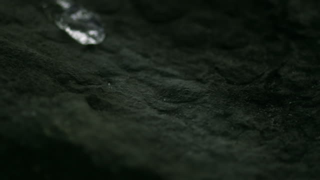 rivulet of water running down a stone in slowmotion hd - origini video stock e b–roll