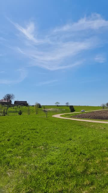 Road against the background of the mill in spring