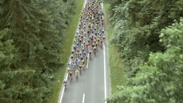 aerial road cycling race through forest - race stock videos & royalty-free footage