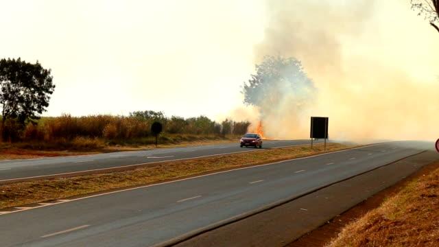 road fire burned plantation
