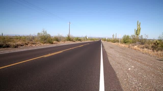 砂漠の道。 - オコティロサボテン点の映像素材/bロール