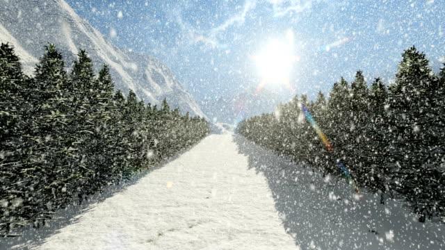 straße im wald schneebedeckter tag - schneeflocke sonnenaufgang stock-videos und b-roll-filmmaterial