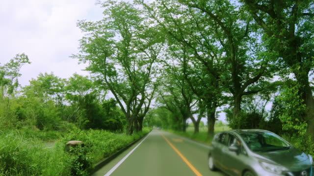 vídeos de stock, filmes e b-roll de estrada nos subúrbios de yokohama onde o verde fresco é bonito - veículo terrestre