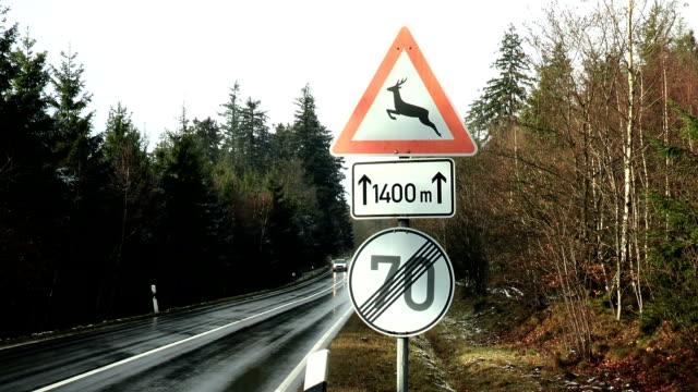 road sign deer crossing - überweg warnschild stock-videos und b-roll-filmmaterial