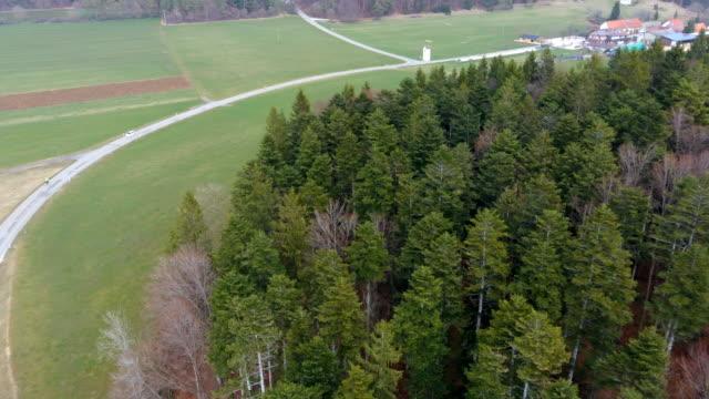 straße durch einen wald mit einer kurve, hohe kiefern, nadelholz - aerial view soil germany stock-videos und b-roll-filmmaterial