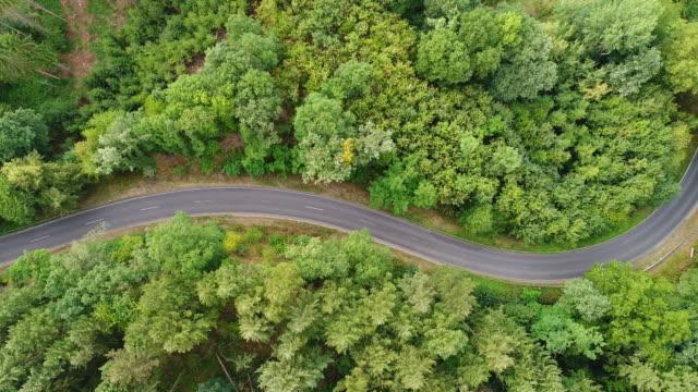 vägen genom skogen - spårning skott, aerial view - kameraåkning på räls bildbanksvideor och videomaterial från bakom kulisserna