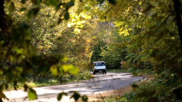 Road traffic in the autumn forest. Traffic on the road in the autumn forest. Branches with leaves in the foreground. vänskap stock videos & royalty-free footage