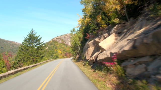 FPV: Road trip across the USA through lush dense forest in Acadia National Park video