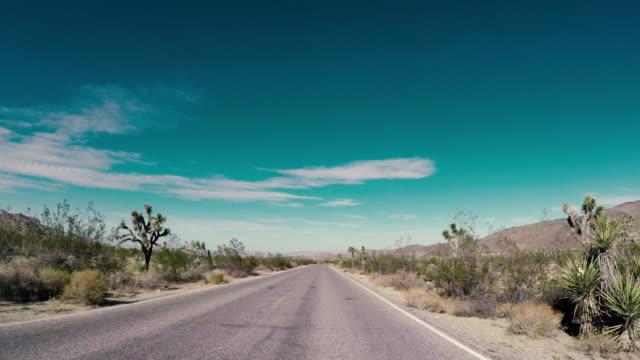 アメリカ合衆国 - ジョシュア ツリー国立公園の道路の旅 - ジョシュアツリー国立公園点の映像素材/bロール