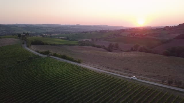 Road trip in Tuscany with vineyards - Aerial view