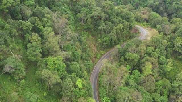 森の中を通るロードトリップ-空中の視点4k ビデオ - 曲線点の映像素材/bロール