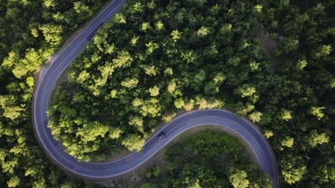 vídeos y material grabado en eventos de stock de viaje por carretera a través de un bosque - punto de vista aérea - conducir