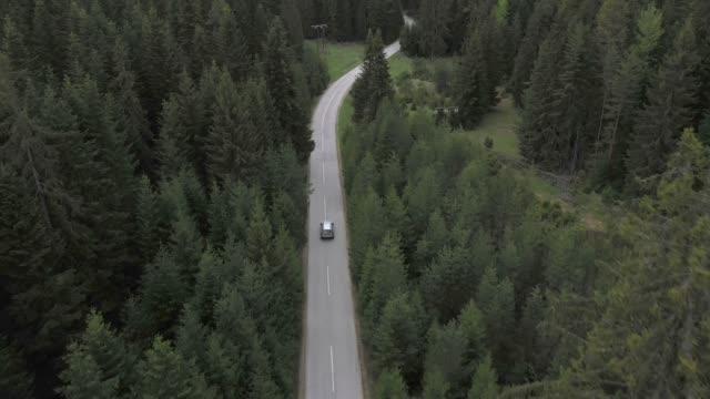 森の中を旅する - 車点の映像素材/bロール