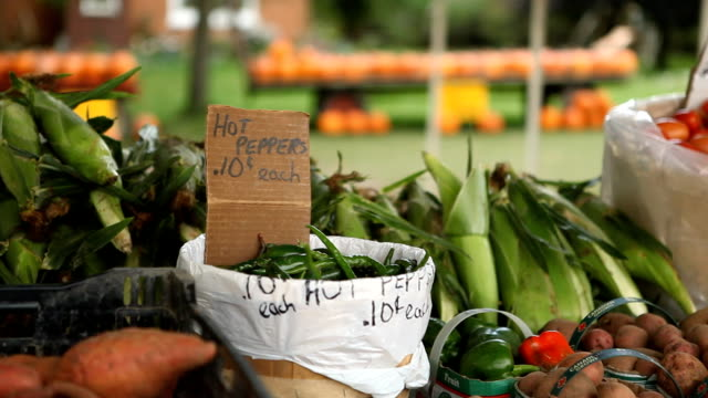 Roadside Vegetable Stand video