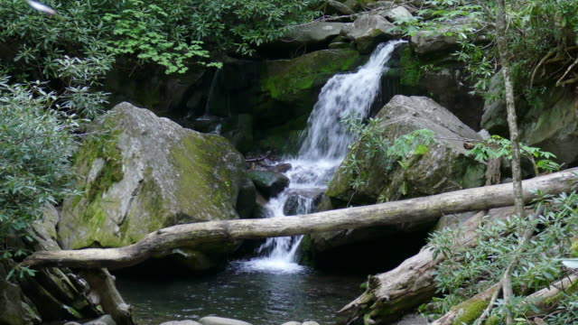Roaring Fork River waterfalls Grotto Falls Smoky Mountains NP Tennessee video