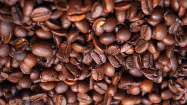 roasted arabica coffee beans - кофеин стоковые видео и кадры b-roll