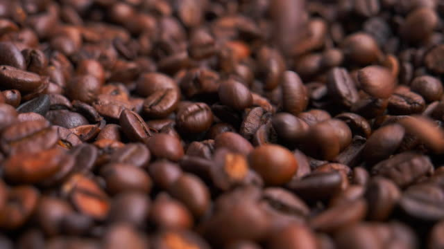 Roasted Arabica Coffee Beans video