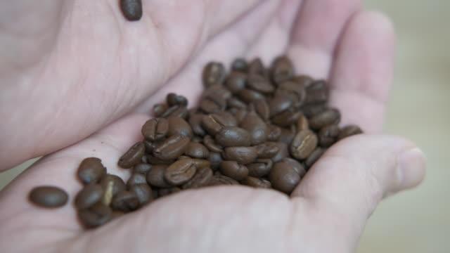 geröstete kaffeebohnen in den händen - koffeinmolekül stock-videos und b-roll-filmmaterial