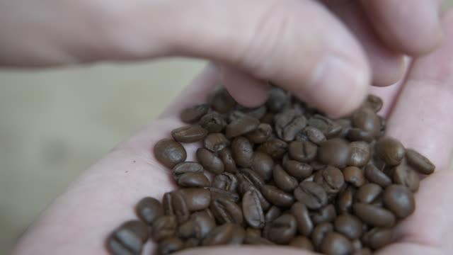 geröstete kaffeesamen in weiblichen händen. - koffeinmolekül stock-videos und b-roll-filmmaterial