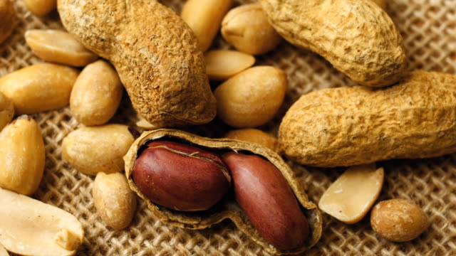 Roasted peanuts in shell video