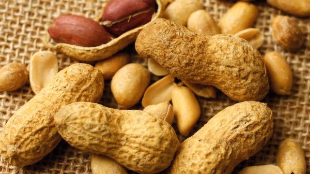 Roasted peanuts in shell Peanut in the shell roasted stock videos & royalty-free footage