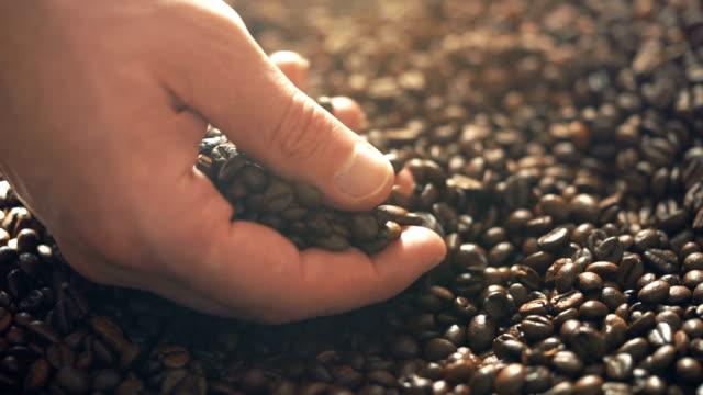 rösten braunen kaffeebohnen mit dampf. kamerafahrt, nahaufnahme - geröstete kaffeebohne stock-videos und b-roll-filmmaterial