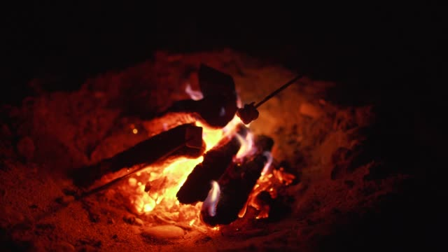 Roasting marshmallows over bonfire on the beach at night. Close-up Roasting marshmallows over bonfire on the beach at night. Close-up in Odessa marshmallow stock videos & royalty-free footage