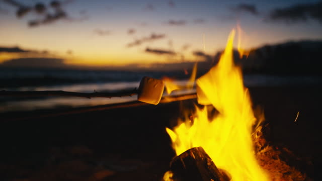Roasting Marshmallows over Fire - video