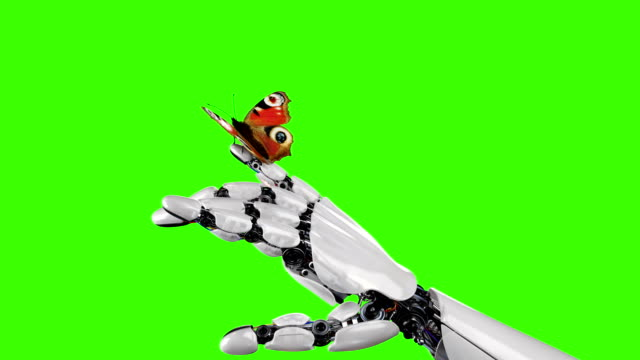 Robot Hand and Butterfly on a Green Background Robot Hand and Butterfly on a Green Background. Beautiful 3d animation. 4K alpha channel stock videos & royalty-free footage